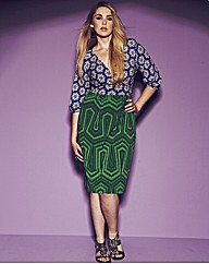 Anna Scholz Fitted Print Blocking Dress