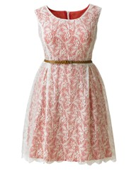 AX Paris Lace Belted Dress