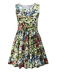 Joe Browns Days Gone By Dress