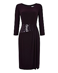 Gina Bacconi Sequin Waist Dress