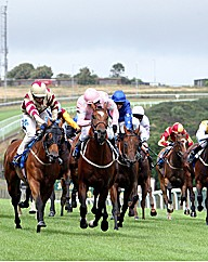 Horse Racing Day For Two