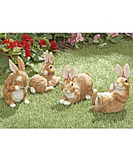Country Bunnies Set of 4
