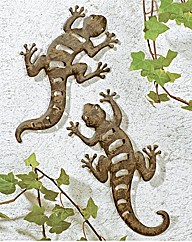 Pair of Garden Geckos