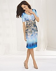 Apanage Animal Print Ombre Jersey Dress