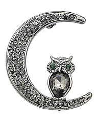 Owl and Moon Brooch
