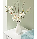 Ever Fresh Orchids in a Vase