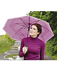 Windproof Umbrella Buy One Get One Free