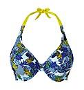 Cleo Plunge Bikini Top
