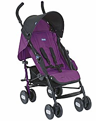 Chicco Echo Stroller Cyclamen Purple