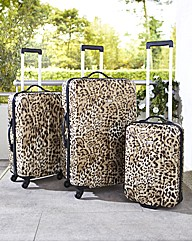 Revelation Zygo Animal Nest of Suitcases