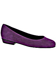 Riva Marmoset Suede Ladies Court