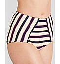 Santa Cruz High Waisted Control Brief