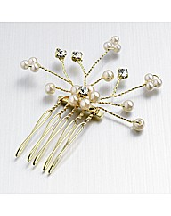 Gold Coloured Side comb