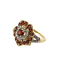 9ct Diamond and Garnet Ring