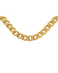 Sterling Silver Gold Plated Curb Neck