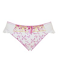 Curvy Kate Firecracker Brief
