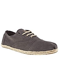 Toms Cordones Perforated