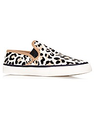Carvela Kurt Geiger Laurel trainers