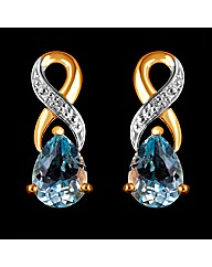 9ct YG Diamond and BT Earrings