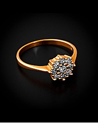 9ct Yellow Gold 0.50ct Cluster Ring