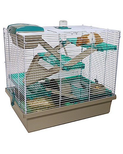 Image of Pico XL Translucent Teal Sml Animal Home