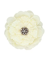 Jon Richard Cream Floral Corsage