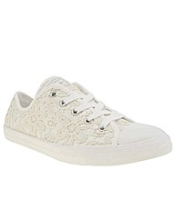 Converse All Star Dainty Lace Ox