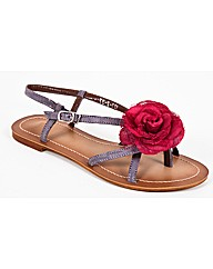 Strawberry Lace Flower Flatty
