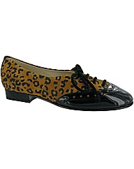 Riva Brogue Lace Patent Suede Shoe