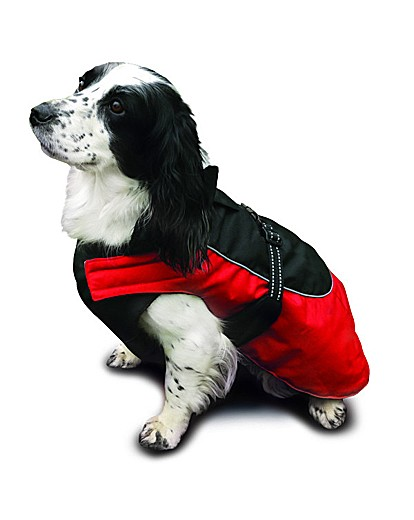 Options All Weather Red Dog Coat 22-24""