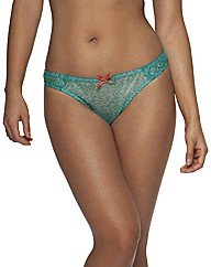 Curvy Kate Madagascar Thong