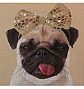 Arthouse Lola The Pug