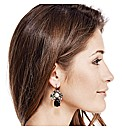 Mood Luxe Jewelled Teardrop Earring