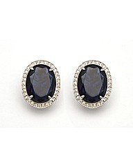 Large Oval Blue and White Clip Earrings