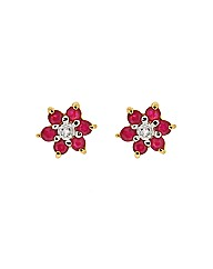 9ct Ruby and Diamond Earring