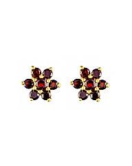 9ct Garnet Earring