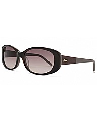 Lacoste Two Tone Oval Sunglasses