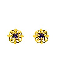9ct Yellow Gold Amethyst Stud Earrings