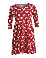 Praslin Daisy Print Swing Dress