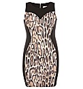 Threads Sweetheart Panel Bodycon Dress