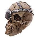 Novelty Skull Decoration with Eye Patch