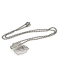 Liverpool S/Steel Pendant & Chain