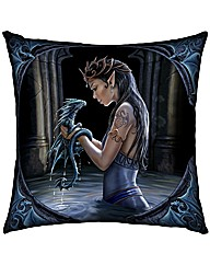 Water Dragon Cushion